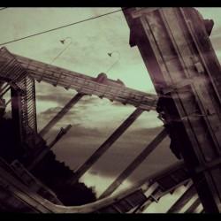 angela-schroeder-rollercoaster